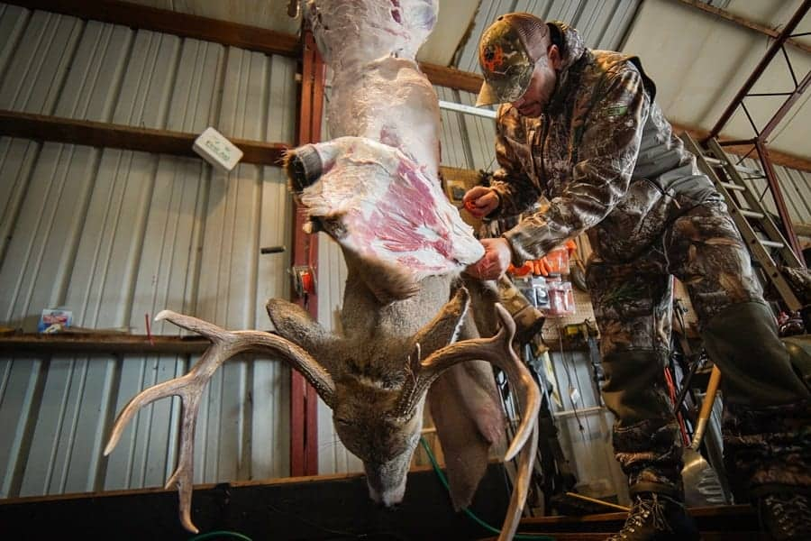 Guide on how to Skin A Deer